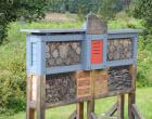 Nistplatz für Wildinsekten