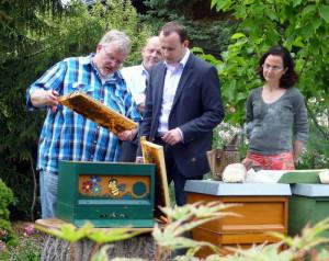 Politiker besuchen Imker
