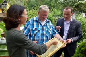 Verkostung des Sommerhonigs im Imker - Garten Radig