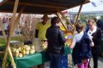 Köstitzer Bauernmarkt 01.05.162